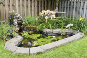 landscaping pond water feature